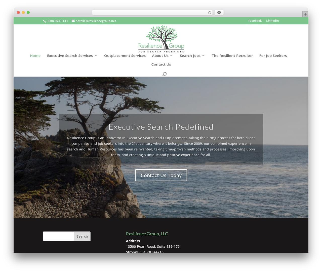 WordPress theme Divi - resiliencegroup.net