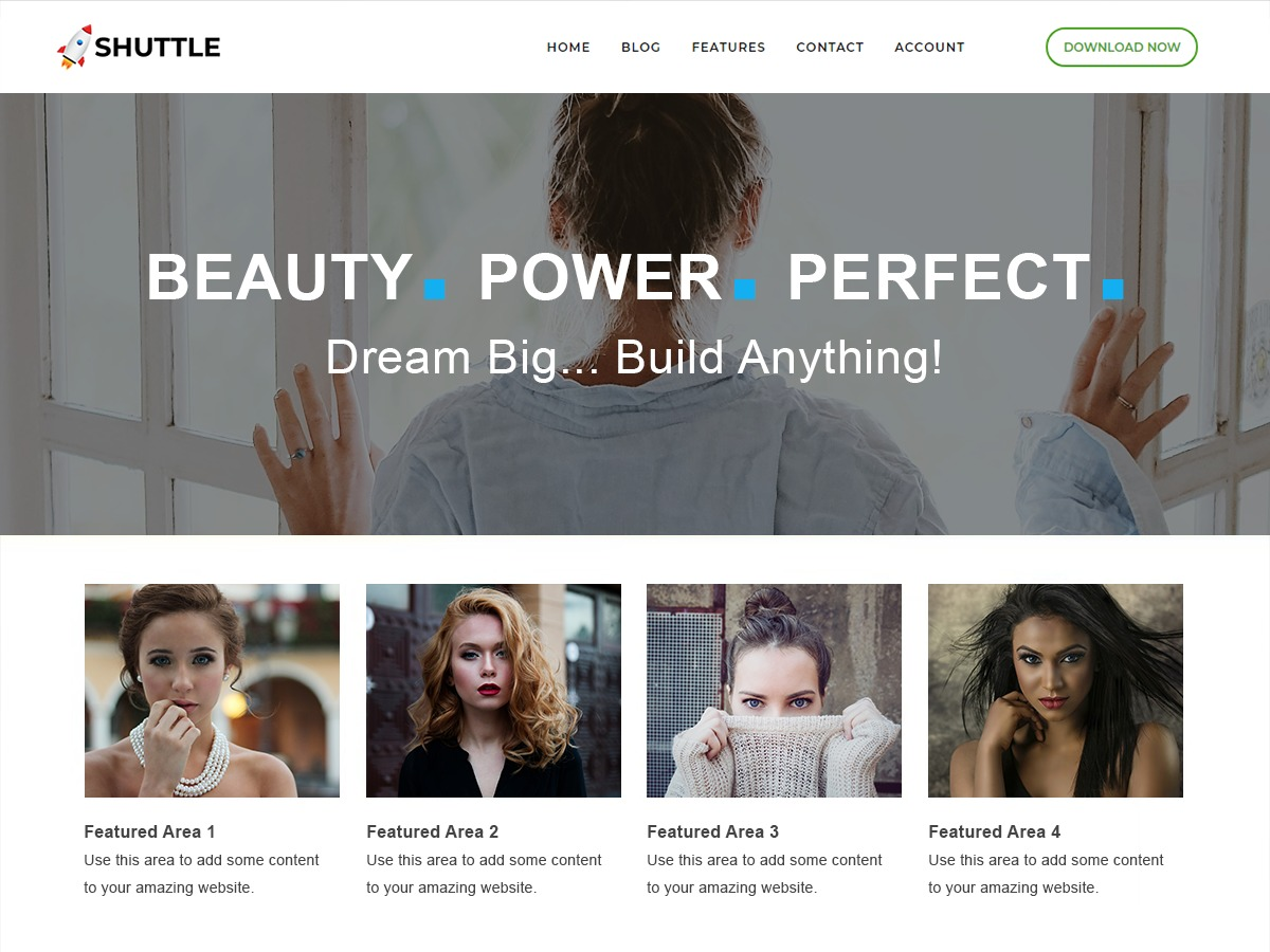 Shuttle Business WordPress shopping theme