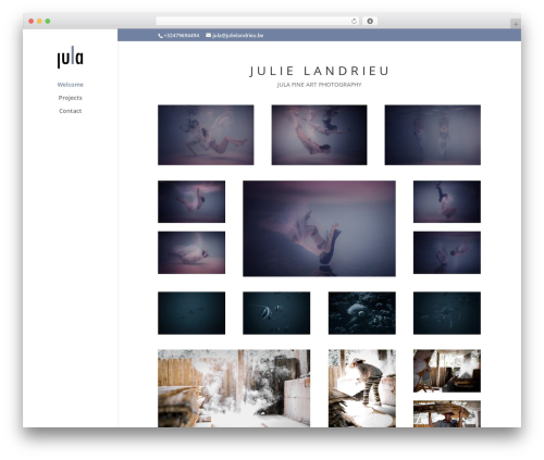 Template WordPress Divi - julielandrieu.be