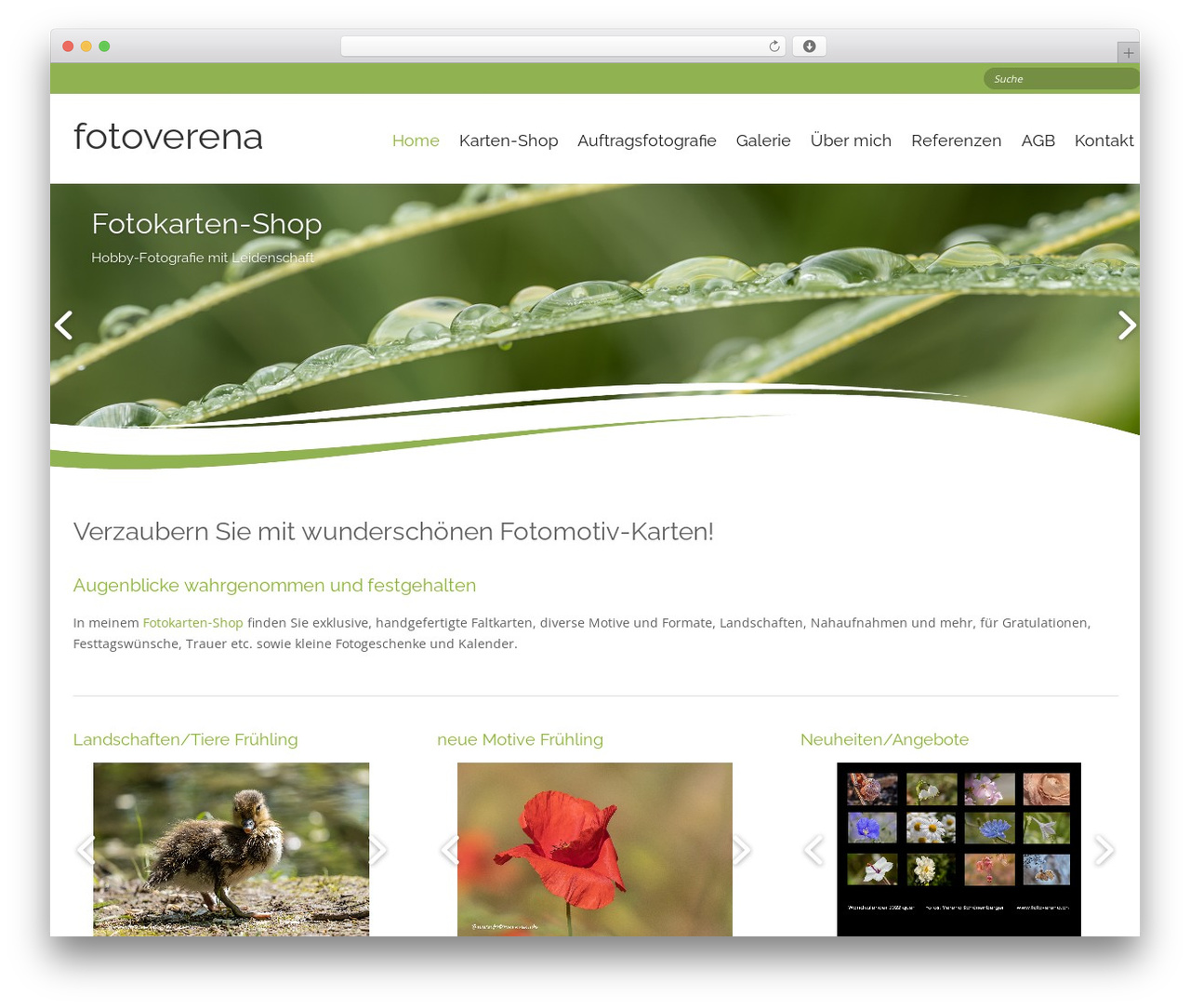 Longevity WordPress free download - fotoverena.ch