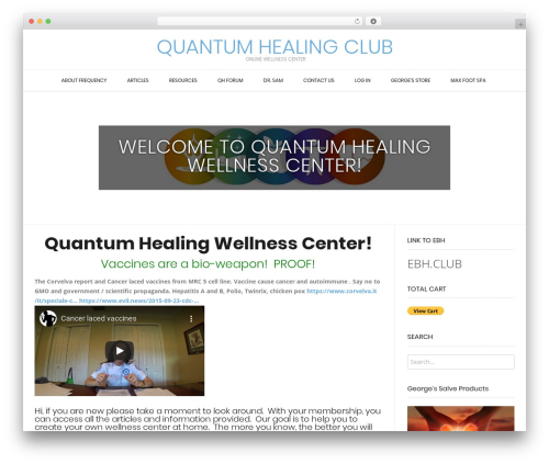 Conica template WordPress free - quantumhealing.club