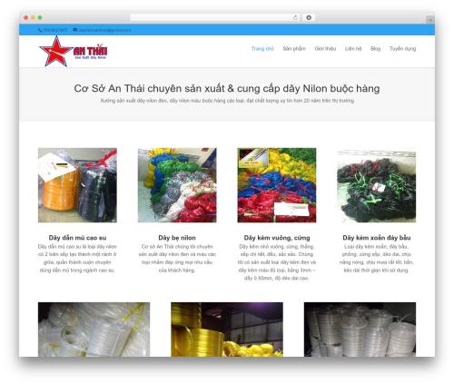 Divi WordPress theme - daynilonanthai.vn