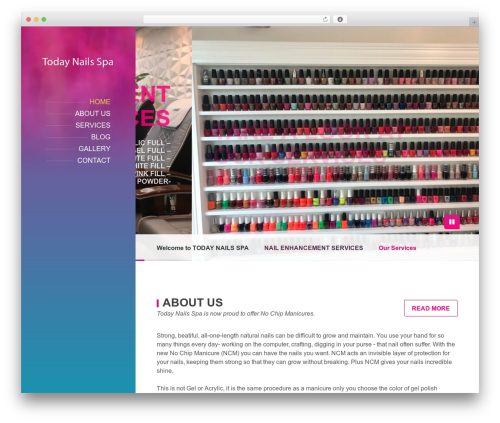 BeautySpot best WordPress template - todaynailsspa.com