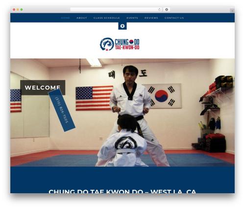 Remobile Pro WordPress website template - taekwondochungdo.com
