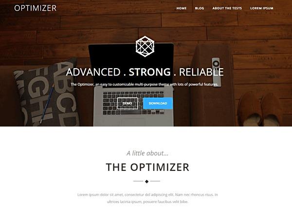 Optimizer company WordPress theme