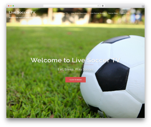 Sydney free WordPress theme - live-soccer-tv.net