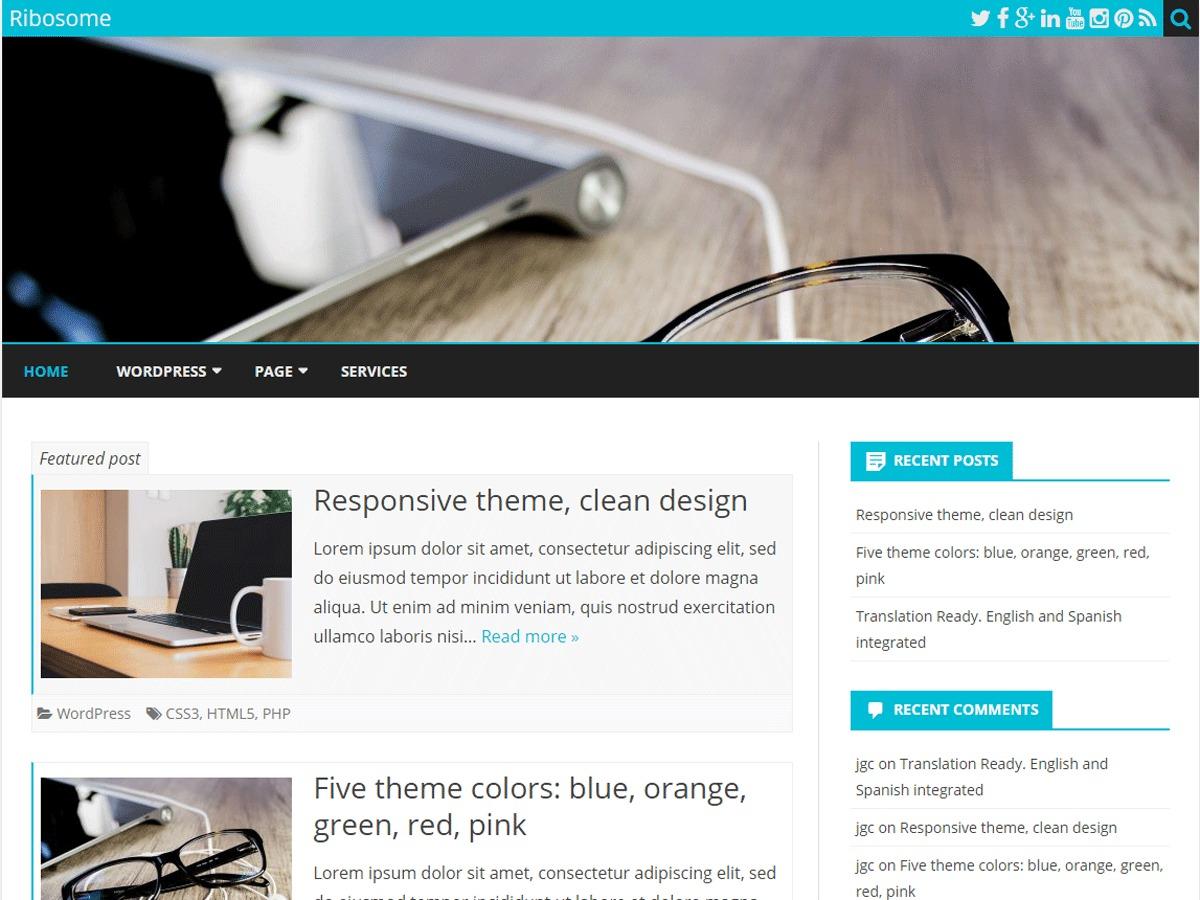 WordPress theme Ribosome