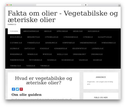 jane top WordPress theme - olie-guiden.dk