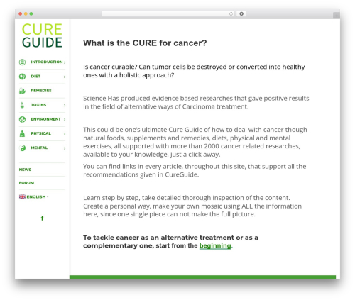 Consulting WordPress theme - cureguide.info
