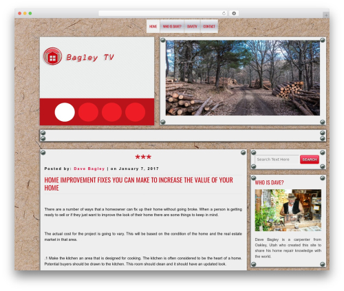 DISCUSSION WordPress template free download - d11b.tv