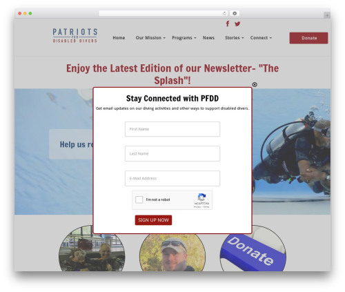 Template WordPress Cherry Framework - patriotsfordisableddivers.org