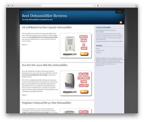 Affiliate Internet Marketing theme WordPress page template - topdehumidifiers.com