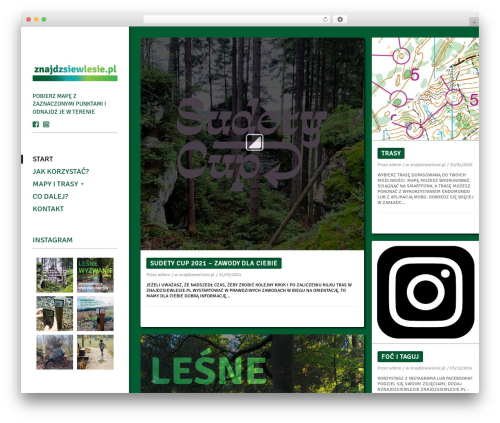 WordPress instagram-picture plugin - znajdzsiewlesie.pl