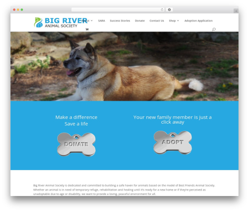 WordPress website template Divi - bigriveranimalsociety.org