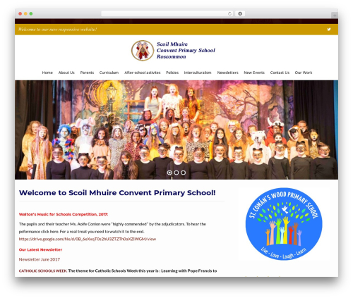 Flat Responsive Child best WordPress theme - conventprimaryroscommon.ie