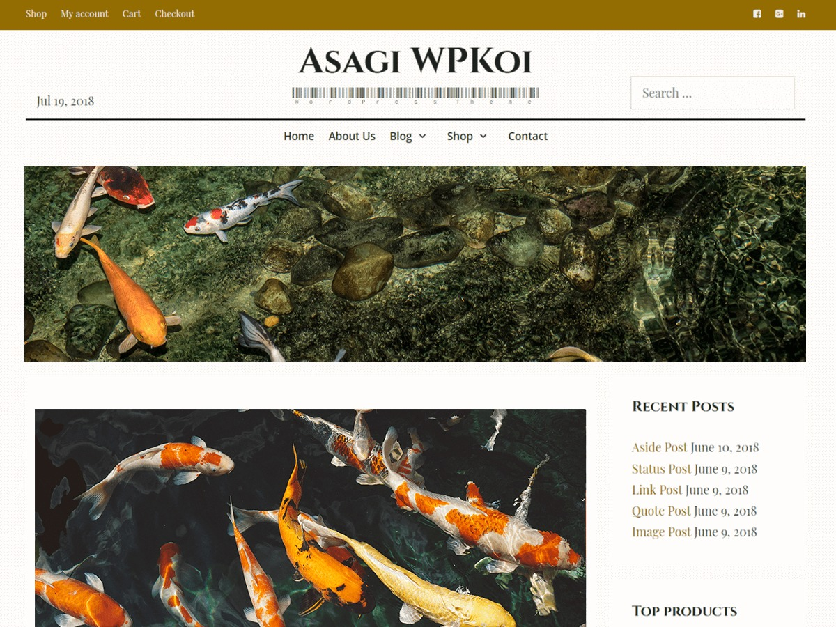 Asagi WordPress shop theme