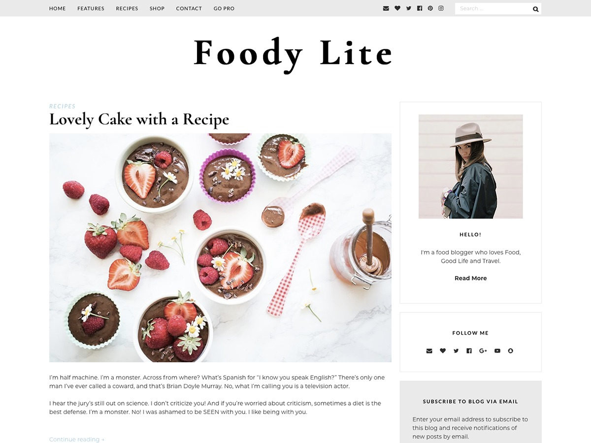 FoodyLite best WooCommerce theme