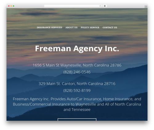 BrightFire Stellar company WordPress theme - freemanagency.biz