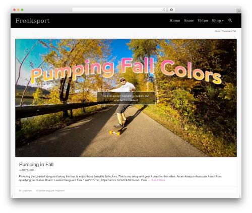 Pinnacle Premium WordPress theme - freaksport.com