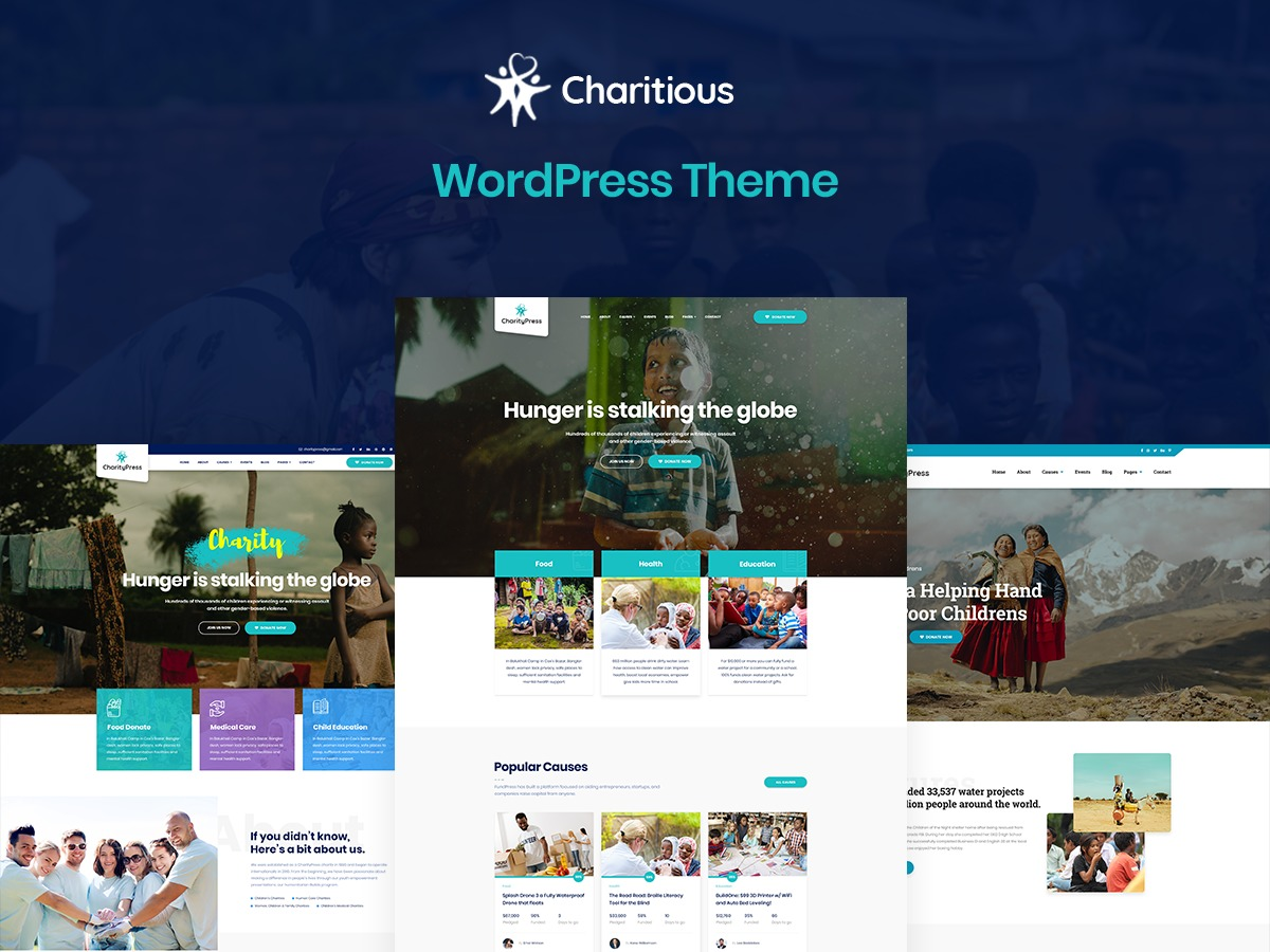 Charitious best WordPress template