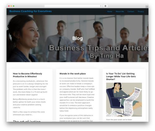 WordPress theme Portum - tingharocks.com.au