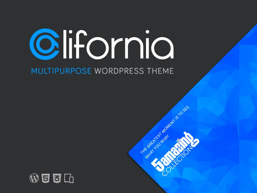California (shared on wplocker.com) best portfolio WordPress theme