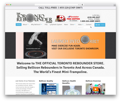 Theme WordPress Whitelight - torontorebounder.com