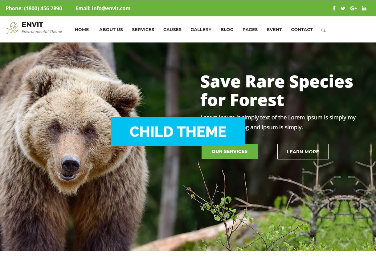 Theme WordPress envit-child