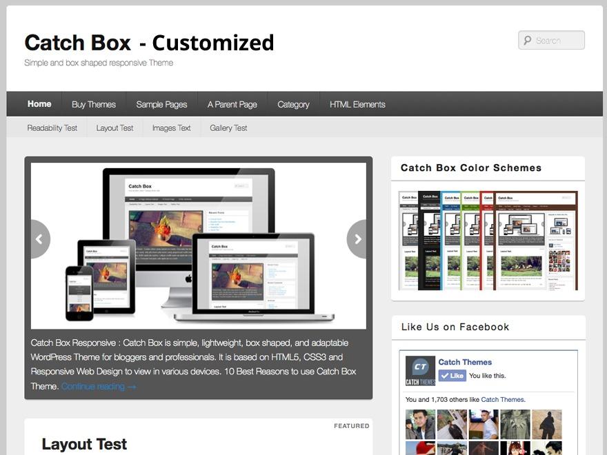 Theme WordPress Three Rivers Media Customised Catch Box