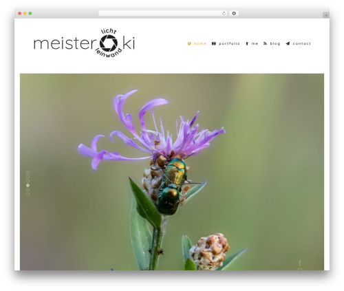 Shutter WordPress theme - media-fx.de