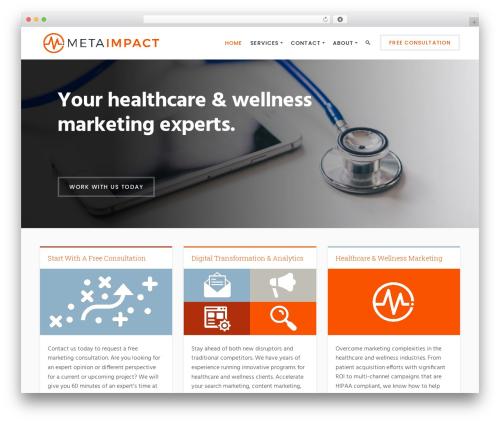 Success WordPress website template - metaimpact.com