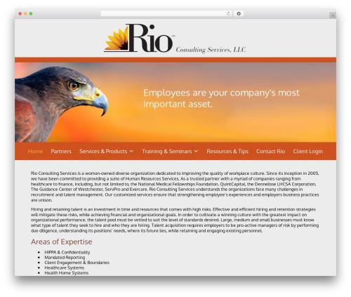 WordPress template Blox Theme - riocs.com