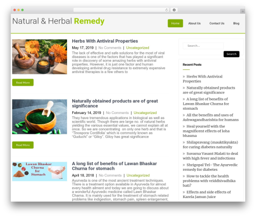 Eco Friendly Lite best WordPress theme - remedynatural-herbs.com
