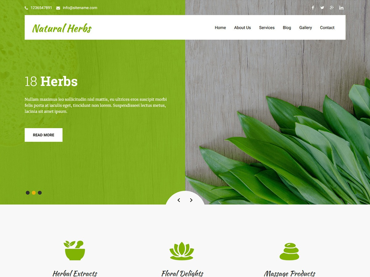 Natural Herbs Lite WordPress ecommerce template