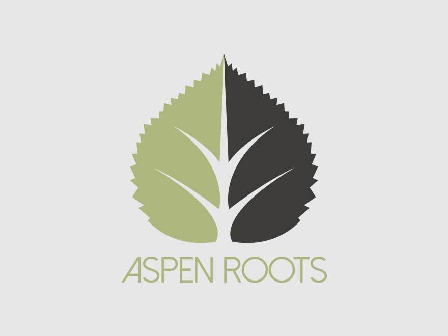 Aspen Roots best WordPress template