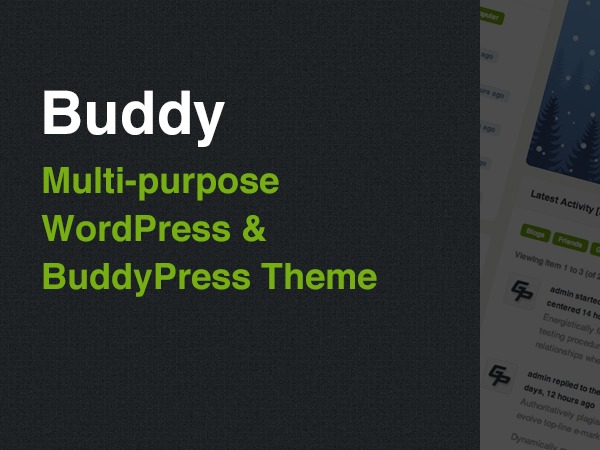 Best WordPress template Buddy