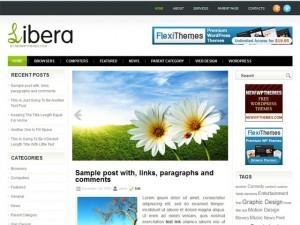 Best WordPress template Libera