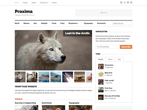 Best WordPress theme Proxima Child