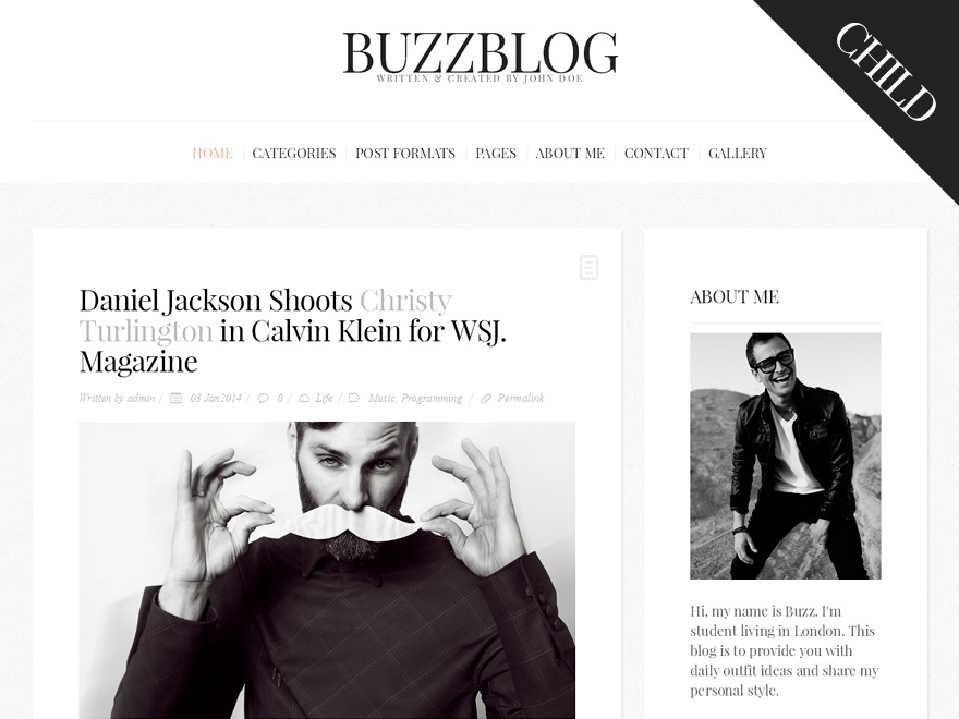 BuzzBlog Child WordPress blog theme