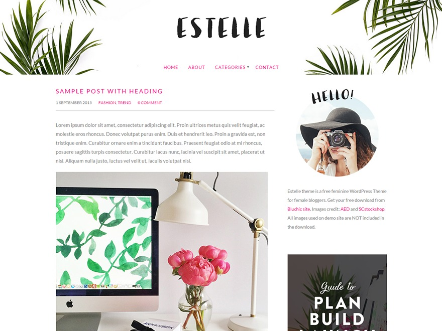 Estelle WordPress theme