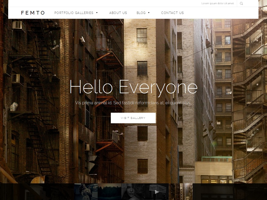Femto WordPress theme image