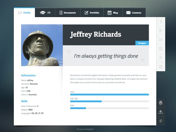 Flexicv Vcard Responsive Layout Template Wordpress By