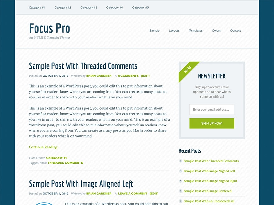 Focus Pro WordPress theme