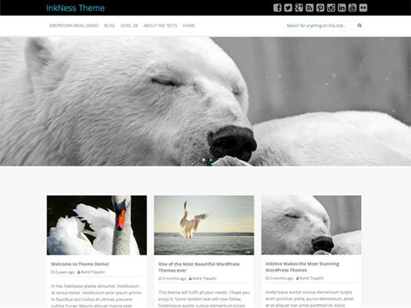 Inkness Plus newspaper WordPress theme