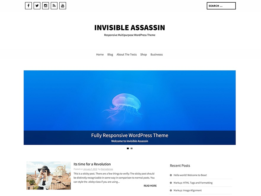 Invisible Assassin WordPress free download
