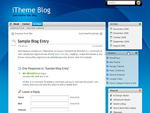 iTheme best WordPress template