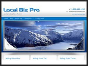 Local Biz PRO WordPress template for business