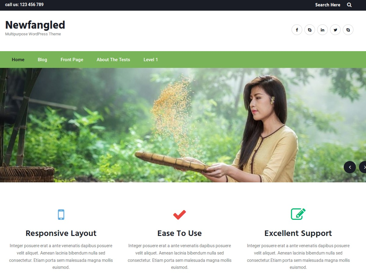 Newfangled template WordPress free