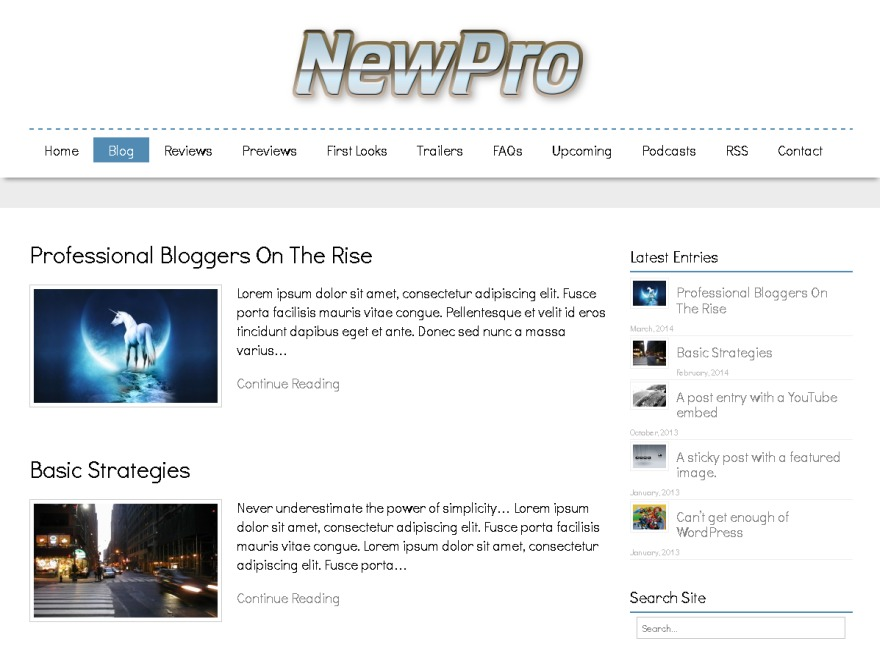 NewPro WordPress blog template