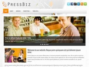 PressBiz personal WordPress theme